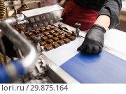 Купить «candies making by chocolate coating machine», фото № 29875164, снято 4 декабря 2018 г. (c) Syda Productions / Фотобанк Лори