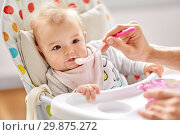 Купить «father feeding baby sitting in highchair at home», фото № 29875272, снято 25 августа 2018 г. (c) Syda Productions / Фотобанк Лори