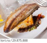 Купить «Roasted scomber with potatoes», фото № 29875888, снято 25 января 2020 г. (c) Яков Филимонов / Фотобанк Лори