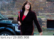 Купить «Ministers attend weekly cabinet meeting in Downing Street. Featuring: Claire Perry - Minister of State at Department for Business Energy and Industrial...», фото № 29885908, снято 16 января 2018 г. (c) age Fotostock / Фотобанк Лори