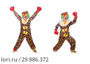 Купить «Clown with boxing gloves isolated on white», фото № 29886372, снято 13 мая 2015 г. (c) Elnur / Фотобанк Лори