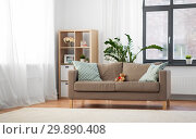 Купить «sofa with cushions at cozy home living room», фото № 29890408, снято 23 июля 2018 г. (c) Syda Productions / Фотобанк Лори
