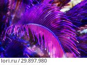 Купить «Trendy colored natural floral pattern of palm leaves», фото № 29897980, снято 23 марта 2018 г. (c) Kira_Yan / Фотобанк Лори
