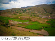 Купить «Landscape with the rice fields at Ambalavao Fianarantsoa ,Madagascar», фото № 29898020, снято 5 декабря 2018 г. (c) Сергей Майоров / Фотобанк Лори
