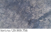 Купить «Flying up over winter forest covered with snow», видеоролик № 29909756, снято 17 января 2019 г. (c) Михаил Коханчиков / Фотобанк Лори