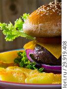 Купить «Heeseburger with beef, tomato, cheese, cucumber and french fries», фото № 29919408, снято 26 марта 2019 г. (c) Яков Филимонов / Фотобанк Лори