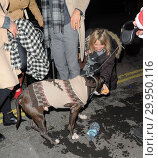 Купить «Celebrities Seen at Mahiki Night Club Mayfair Featuring: Carly Stenson Danny Mac Where: London, United Kingdom When: 10 Dec 2017 Credit: WENN.com», фото № 29950116, снято 10 декабря 2017 г. (c) age Fotostock / Фотобанк Лори