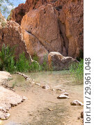Water flow after small waterfall between eroded rocks, green plants on riverside. Chebika oasis. Range of Djebel el Negueb, Toseur, western Tunisia, Africa (2012 год). Стоковое фото, фотограф Кекяляйнен Андрей / Фотобанк Лори