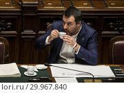 Купить «Italian Minister of Interior and Deputy Prime Minister Matteo Salvini during the Question time at Chamber of Deputies, Rome, ITALY-13-02-2019.», фото № 29967840, снято 13 февраля 2019 г. (c) age Fotostock / Фотобанк Лори