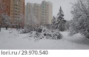 Купить «Moscow in winter during a snowfall», видеоролик № 29970540, снято 13 февраля 2019 г. (c) Володина Ольга / Фотобанк Лори