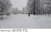Купить «Moscow, Russia -Feb 13. 2019. Parents with baby strollers are walking in city park during a snowfall», видеоролик № 29976772, снято 13 февраля 2019 г. (c) Володина Ольга / Фотобанк Лори