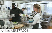 Купить «Attractive young waitress taking prepared dishes from chef in kitchen of modern restaurant», видеоролик № 29977008, снято 16 октября 2018 г. (c) Яков Филимонов / Фотобанк Лори