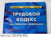 Купить «Трудовой кодекс Российской Федерации», фото № 29978992, снято 16 февраля 2019 г. (c) Victoria Demidova / Фотобанк Лори