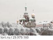Виды Санкт-Петербурга зимой. Спас-на-Крови (2010 год). Стоковое фото, фотограф Александр Алексеев / Фотобанк Лори