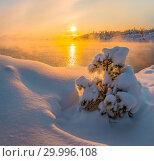 Купить «Новогодние сосны в снегу. Зимний закат на островах Ладожского озера. Морозный закат и деревья в пушистом снегу.», фото № 29996108, снято 23 января 2018 г. (c) Лашков Фёдор / Фотобанк Лори