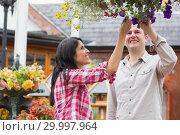 Купить «Couple touching flowers in hanging basket», фото № 29997964, снято 24 июля 2012 г. (c) Wavebreak Media / Фотобанк Лори
