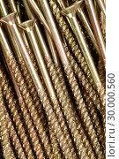 Купить «Golden screws», фото № 30000560, снято 23 февраля 2012 г. (c) Wavebreak Media / Фотобанк Лори