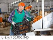 Купить «Man carrying box with mandarins in storage», фото № 30006940, снято 15 декабря 2018 г. (c) Яков Филимонов / Фотобанк Лори