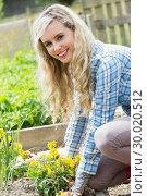 Blonde woman planting yellow flowers smiling at camera. Стоковое фото, агентство Wavebreak Media / Фотобанк Лори