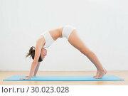 Купить «Sporty young woman doing the Downward Facing Dog pose», фото № 30023028, снято 16 июля 2013 г. (c) Wavebreak Media / Фотобанк Лори