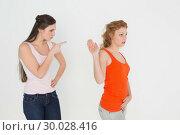 Купить «Angry young female friends having an argument», фото № 30028416, снято 16 августа 2013 г. (c) Wavebreak Media / Фотобанк Лори
