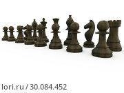 Купить «Black wooden chess pieces standing», фото № 30084452, снято 27 мая 2014 г. (c) Wavebreak Media / Фотобанк Лори