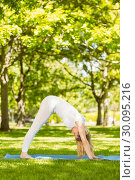 Купить «Peaceful blonde doing yoga in the park», фото № 30095216, снято 28 мая 2014 г. (c) Wavebreak Media / Фотобанк Лори