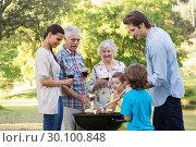 Extended family having a barbecue. Стоковое фото, агентство Wavebreak Media / Фотобанк Лори