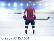 Купить «Composite image of rear view of hockey player at ice rink», фото № 30157664, снято 15 ноября 2018 г. (c) Wavebreak Media / Фотобанк Лори
