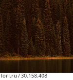 Купить «Trees and lake at countryside», фото № 30158408, снято 4 января 2019 г. (c) Wavebreak Media / Фотобанк Лори