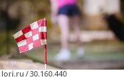 Купить «A young woman playing mini golf. Finishing flag on the foreground», видеоролик № 30160440, снято 25 марта 2019 г. (c) Константин Шишкин / Фотобанк Лори