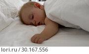 Купить «Adorable sleeping baby on white bed», видеоролик № 30167556, снято 28 января 2019 г. (c) Ekaterina Demidova / Фотобанк Лори