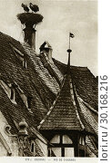 Купить «Гнездо аистов на крыше здания в городе Obernai (Оберне). Эльзас. Франция», фото № 30168216, снято 13 ноября 2019 г. (c) Retro / Фотобанк Лори