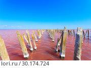 Купить «The salty lake with pink water and the beach from salt. Old logs pier on Lake Sasyk in the Crimea», фото № 30174724, снято 8 декабря 2019 г. (c) Mikhail Starodubov / Фотобанк Лори