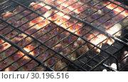 Купить «Close-up - Tasty Meat Sausages Are Baked On The Grill», видеоролик № 30196516, снято 2 октября 2018 г. (c) Pavel Biryukov / Фотобанк Лори
