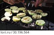 Купить «Sliced Mugs Zucchini Grilled On A Grill», видеоролик № 30196564, снято 2 октября 2018 г. (c) Pavel Biryukov / Фотобанк Лори