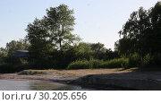 Купить «Evening on the lake. Trees and reeds illuminated by the setting sun. The Sand Martins flying  over water.», видеоролик № 30205656, снято 1 июня 2018 г. (c) Олег Хархан / Фотобанк Лори