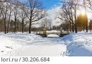 Small Chinese bridge winter day in a snowy Alexander park in Pushkin (Tsarskoye Selo), near Saint Petersburg , Russia (2018 год). Стоковое фото, фотограф Вознесенская Ольга / Фотобанк Лори
