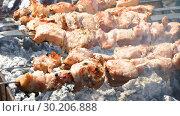 Купить «Grilled appetizing kebab cooking on metal skewers», видеоролик № 30206888, снято 18 июля 2019 г. (c) FotograFF / Фотобанк Лори