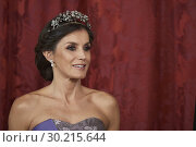 Купить «Queen Letizia of Spain attends a gala Dinner honouring President of Peru and wife at Royal Palace on February 27, 2019 in Madrid, Spain», фото № 30215644, снято 27 февраля 2019 г. (c) age Fotostock / Фотобанк Лори