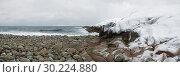 Купить «На берегу Северного Ледовитого океана февральским днем. Россия», фото № 30224880, снято 19 февраля 2019 г. (c) Виктор Карасев / Фотобанк Лори