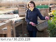Купить «Girl farmer caring for poultry», фото № 30233228, снято 22 мая 2019 г. (c) Яков Филимонов / Фотобанк Лори