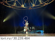 Купить «'Totem' the last circus tent show on tour of Cirque du Soleil - from 10 November 2017 to 14 January 2018 - in Madrid, Spain. Featuring: Atmosphere Where...», фото № 30239484, снято 9 ноября 2017 г. (c) age Fotostock / Фотобанк Лори