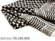 Купить «Palestinian Keffiyeh on a white background.», фото № 30240868, снято 24 ноября 2008 г. (c) easy Fotostock / Фотобанк Лори