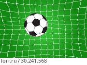 Купить «Soccer ball in the net», иллюстрация № 30241568 (c) Сергей Лаврентьев / Фотобанк Лори
