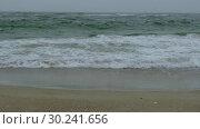 Купить «Rough sea with snow storm. Winter sea storm wave strikes the sandy coast. Coastal seascape», видеоролик № 30241656, снято 8 августа 2018 г. (c) Некрасов Андрей / Фотобанк Лори