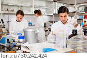 Купить «Scientific researching in laboratory. Focused young man pipetting reagent into solution in test tube», фото № 30242424, снято 28 ноября 2018 г. (c) Яков Филимонов / Фотобанк Лори