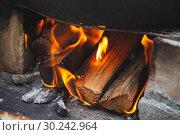 Close up photo of outdoor bonfire. Стоковое фото, фотограф EugeneSergeev / Фотобанк Лори