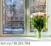 Букет тюльпанов в вазе стоит на окне. Стоковое фото, фотограф Игорь Низов / Фотобанк Лори