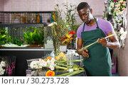 Купить «Florist preparing gerberas for bouquet», фото № 30273728, снято 14 февраля 2019 г. (c) Яков Филимонов / Фотобанк Лори